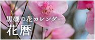 黒磯の花カレンダー 花暦